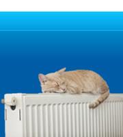 boiler repair | Central Heating Repairs